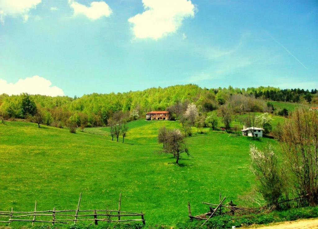 Menekşe Plateau in Maşukiye