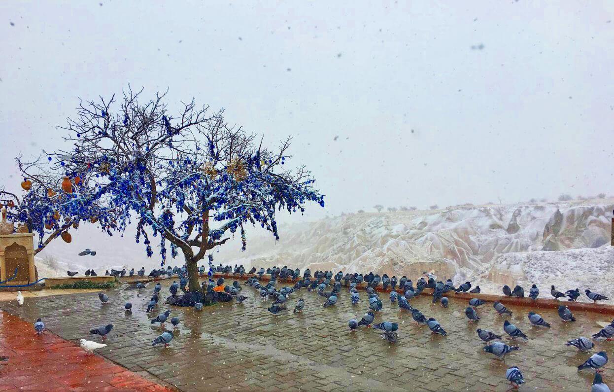 Голубиная долина (Güvercinlik Vadisi) в Каппадокии Голубиные долины Каппадокии Голубиные долины Каппадокии Pigeon Valley Cappadocia 4