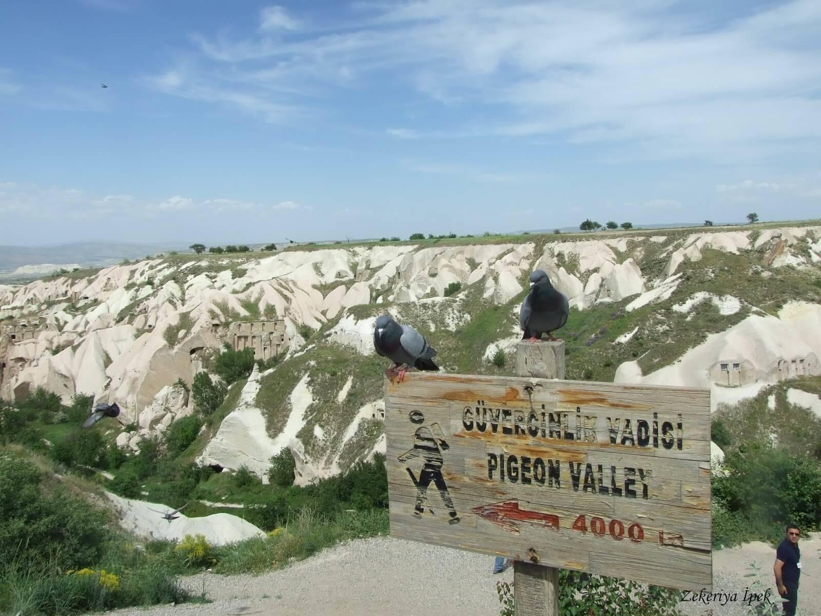 Голубиная долина (Güvercinlik Vadisi) в Каппадокии Голубиные долины Каппадокии Голубиные долины Каппадокии Pigeon Valley Cappadocia